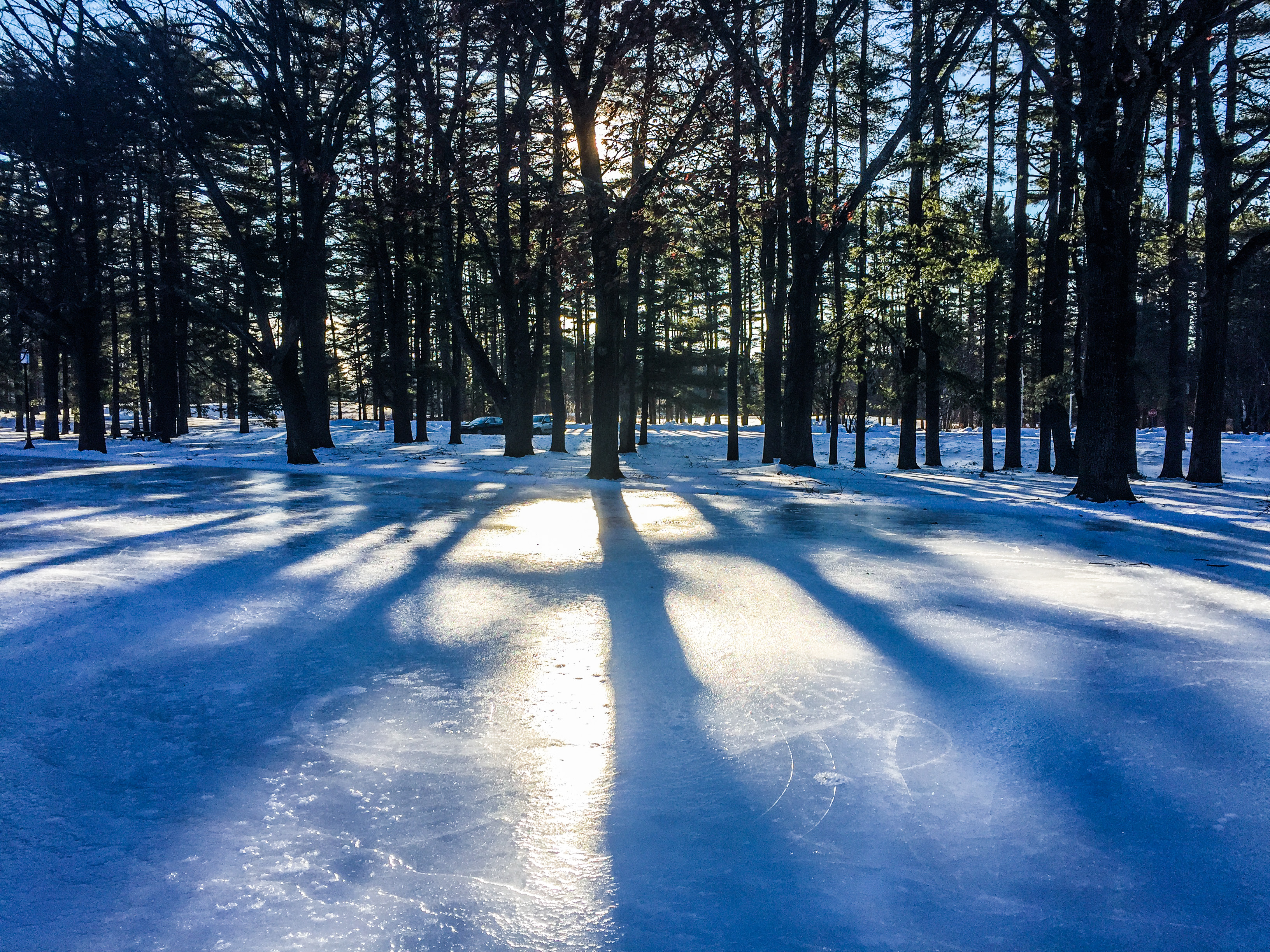 Saratoga Spa Park Ice Skating